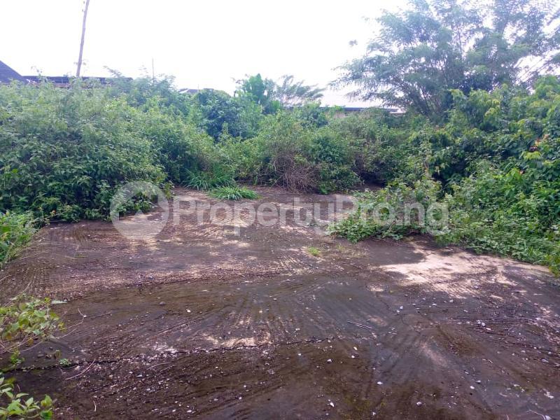 Residential Land for sale Ashaka Estate, Abese Elebu Akala Express Ibadan Oyo - 1