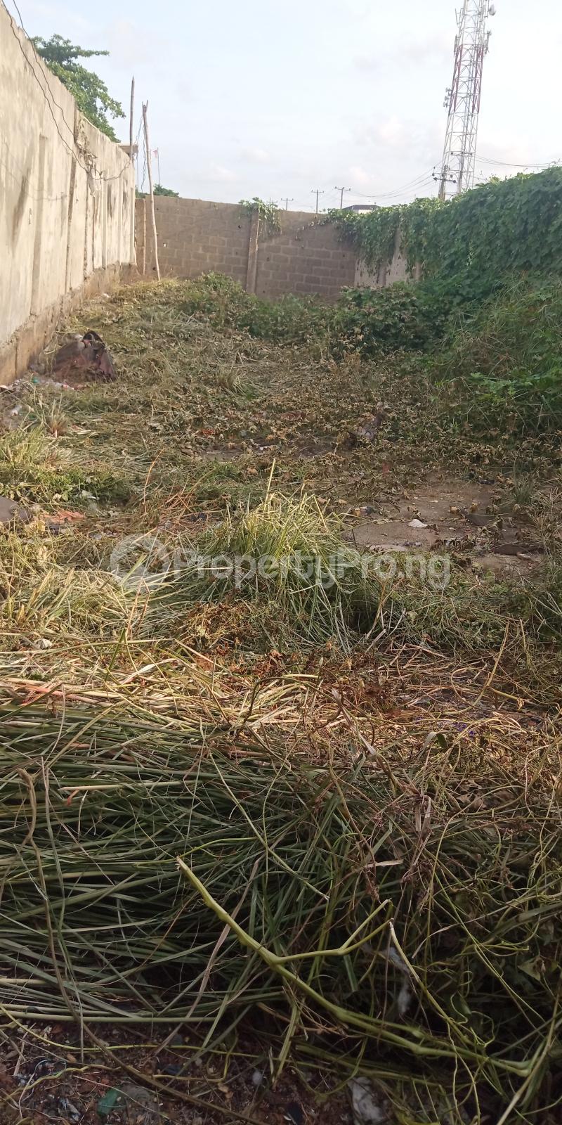 Residential Land for sale Owolegbon Atunrase Medina Gbagada Lagos - 0