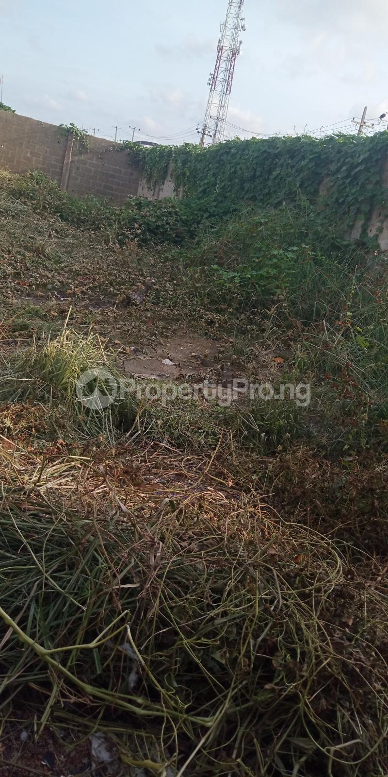 Residential Land for sale Owolegbon Atunrase Medina Gbagada Lagos - 1