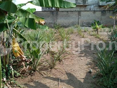 Residential Land Land for sale Private Estate Arepo Ogun - 2