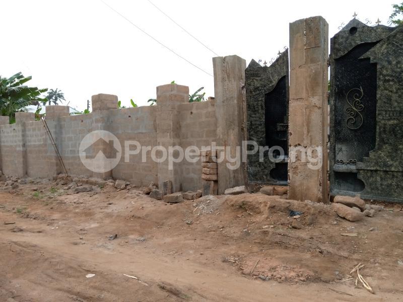 Mixed   Use Land Land for sale Umudim Nnewi Nnewi North Anambra - 0