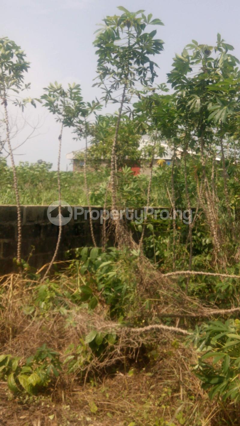 Industrial Land Land for sale Agbowa Ikorodu Ikorodu Lagos - 0