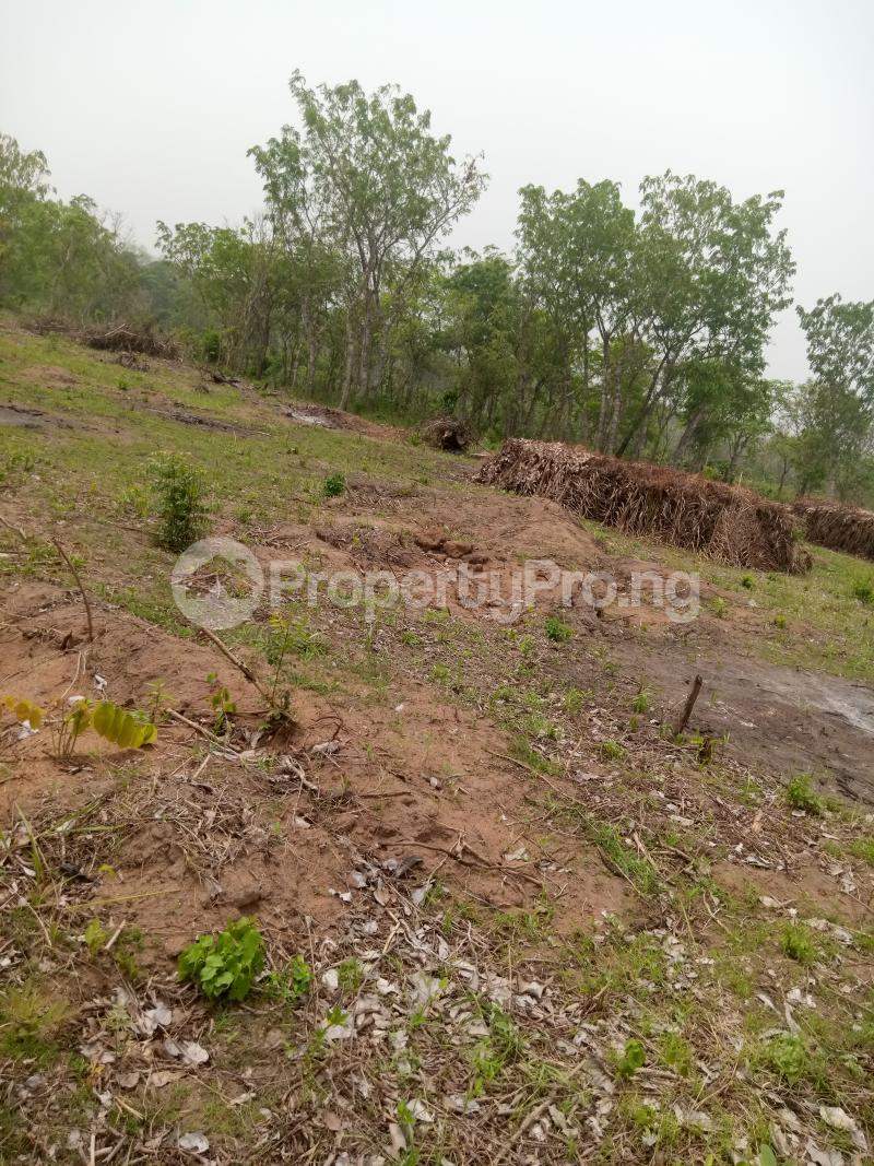 Commercial Land Land for sale Alabata Abeokuta Ogun - 0