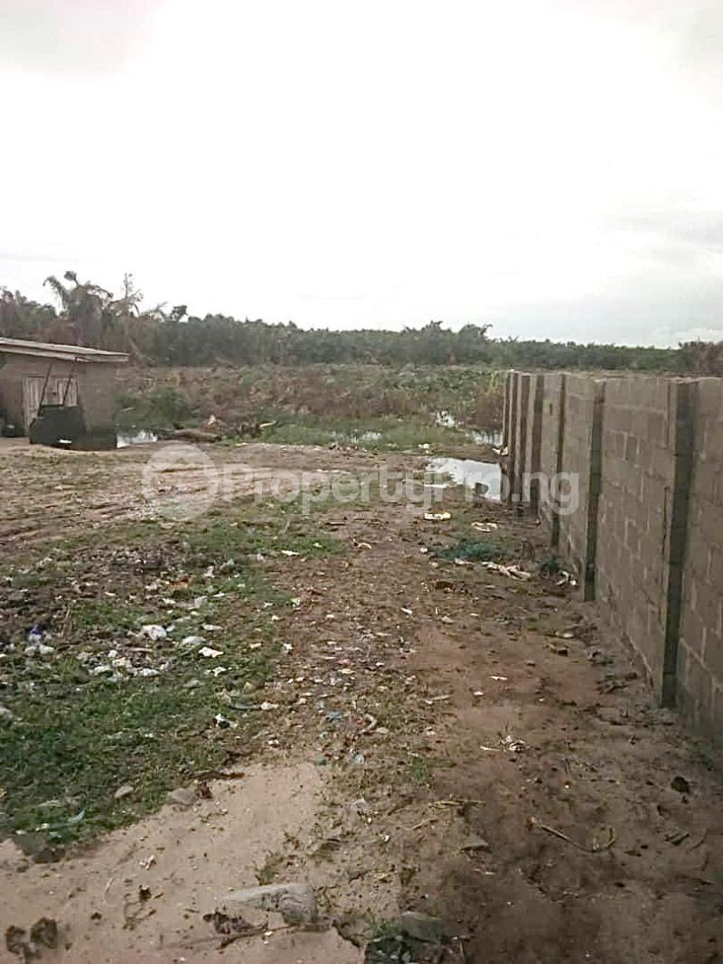 Residential Land Land for sale Jewel Gardens, Sharing Boundary With Amen Estate Phase2 Eleko Ibeju-Lekki Lagos - 2