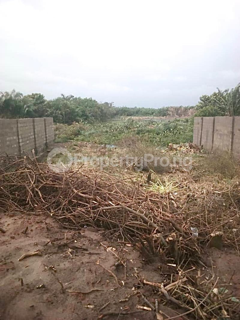 Residential Land Land for sale Jewel Gardens, Sharing Boundary With Amen Estate Phase2 Eleko Ibeju-Lekki Lagos - 5