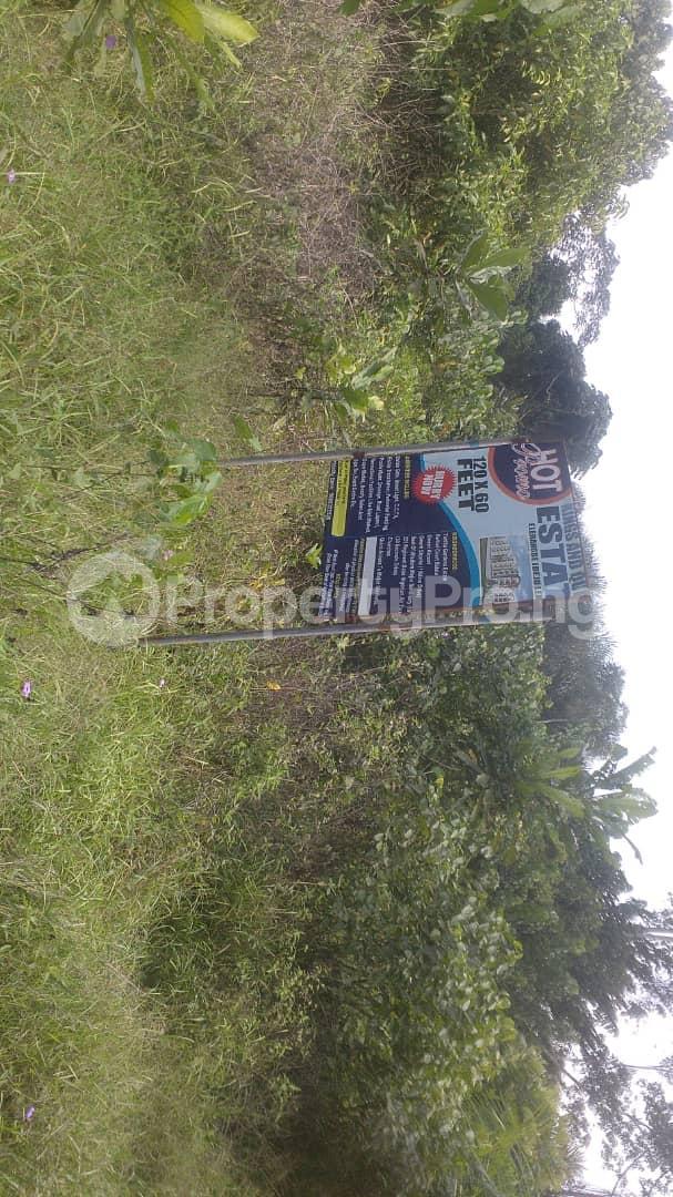 Residential Land Land for sale Oriba  Eleranigbe Ibeju-Lekki Lagos - 4