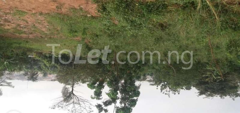 Land for sale Ifako/Ijaye Alimosho Lagos - 1