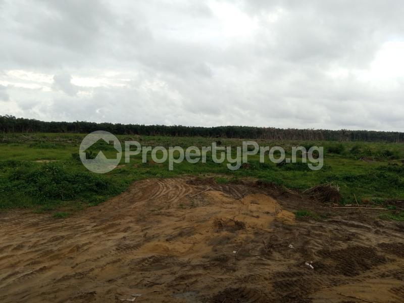 Mixed   Use Land Land for sale Alaro City Epe Road Epe Lagos - 1