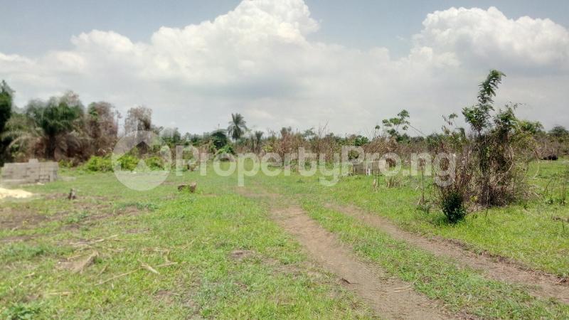 Land for sale Mawere Tapa Rd  Agric Ikorodu Lagos - 11