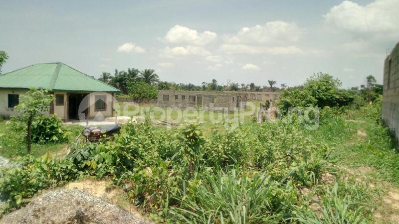 Land for sale Mawere Tapa Rd  Agric Ikorodu Lagos - 14
