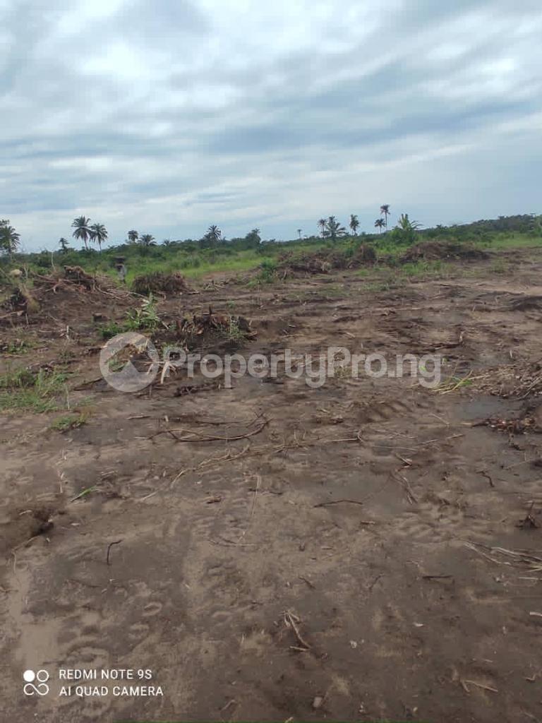 Residential Land for sale His Glory Residence Estate, Aga Olowo. Ewekoro Ogun - 5