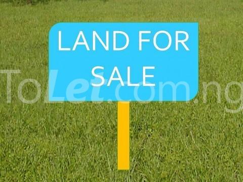 Land for sale Lekki Free Trade Zone Road Ajah Ibeju-Lekki Lagos - 1