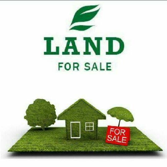 Land for sale Prayers Estate Amuwo Odofin Lagos - 1