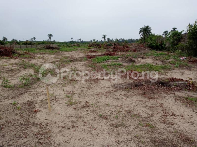 Residential Land Land for sale Royal Garden Estate. Directly Facing The Coastal Line. Free Trade Zone Ibeju-Lekki Lagos - 5