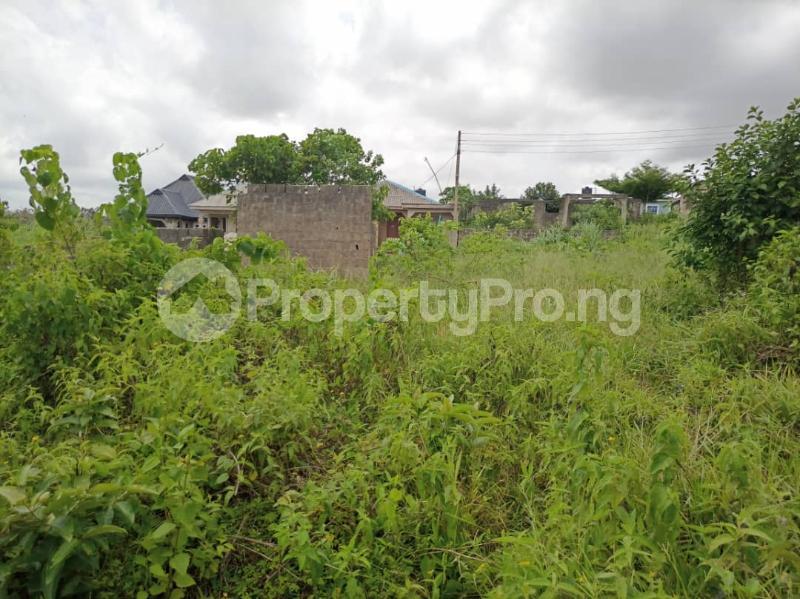 Land for sale Itele Ijebu Ogun - 12