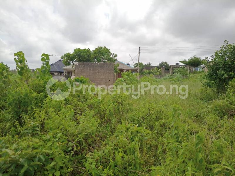 Land for sale Itele Ijebu Ogun - 7