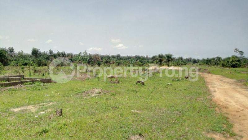 Land for sale Mawere Tapa Rd  Agric Ikorodu Lagos - 4