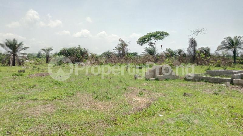 Land for sale Mawere Tapa Rd  Agric Ikorodu Lagos - 6