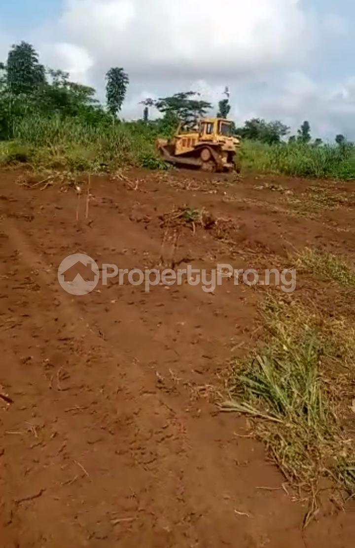 Residential Land for sale Western Hilltop Estate Ikola Alagbado Alimosho Lagos - 2