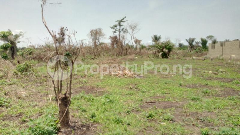 Land for sale Mawere Tapa Rd  Agric Ikorodu Lagos - 10