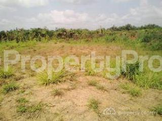 Joint   Venture Land Land for sale Unn Nsukka Enugu - 0