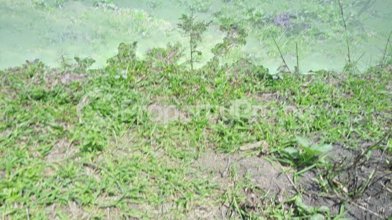 Land for sale Mawere Tapa Rd  Agric Ikorodu Lagos - 7