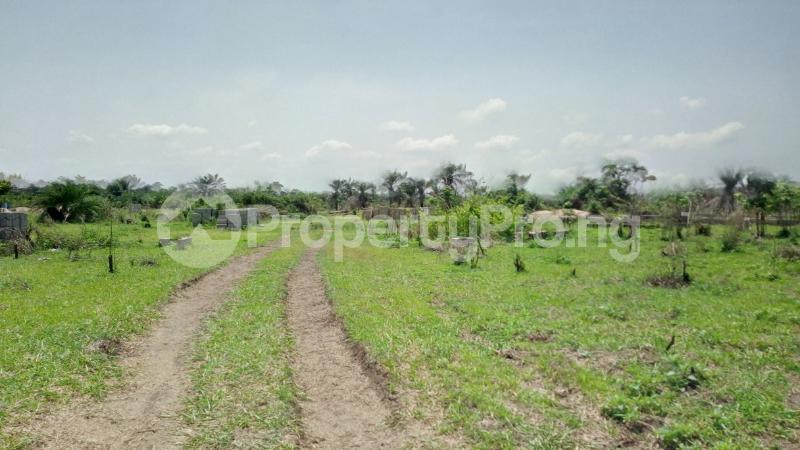 Land for sale Mawere Tapa Rd  Agric Ikorodu Lagos - 1