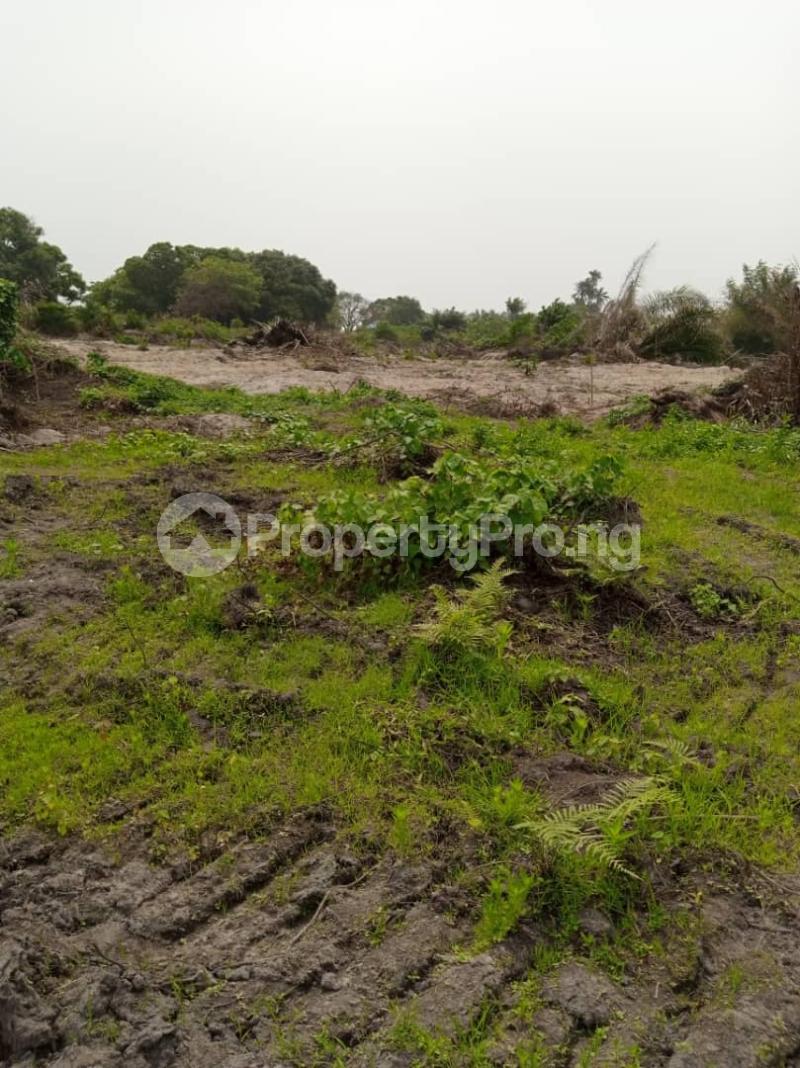 Land for sale MICL Farm, Alabata  Abeokuta Ogun - 3