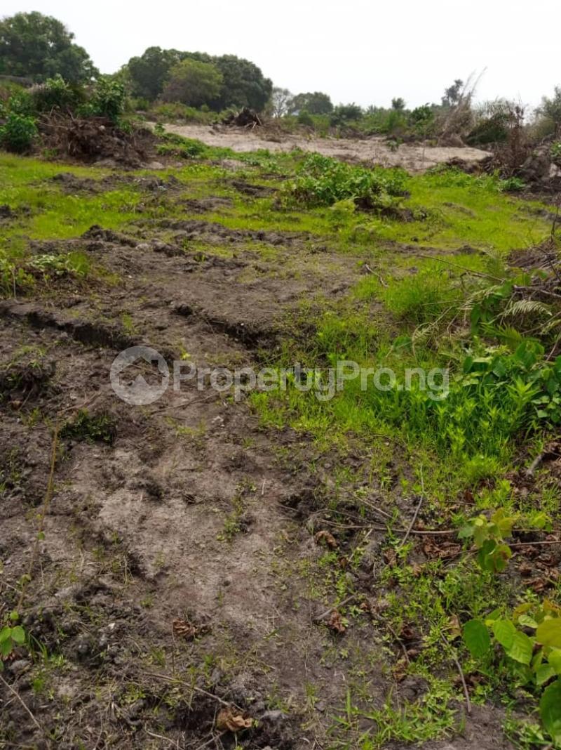 Land for sale MICL Farm, Alabata  Abeokuta Ogun - 4