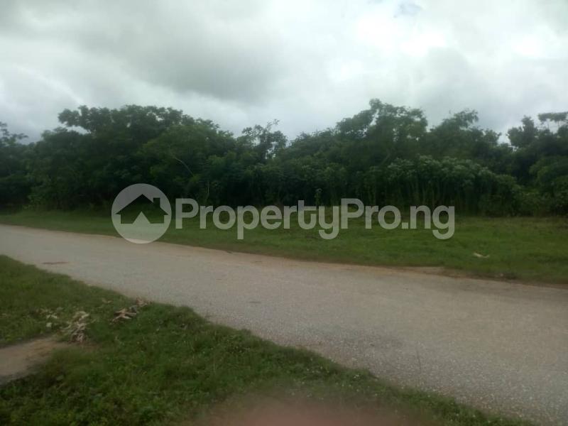 Land for sale Age Mowo, Along Badagry Express Way Age Mowo Badagry Lagos - 1