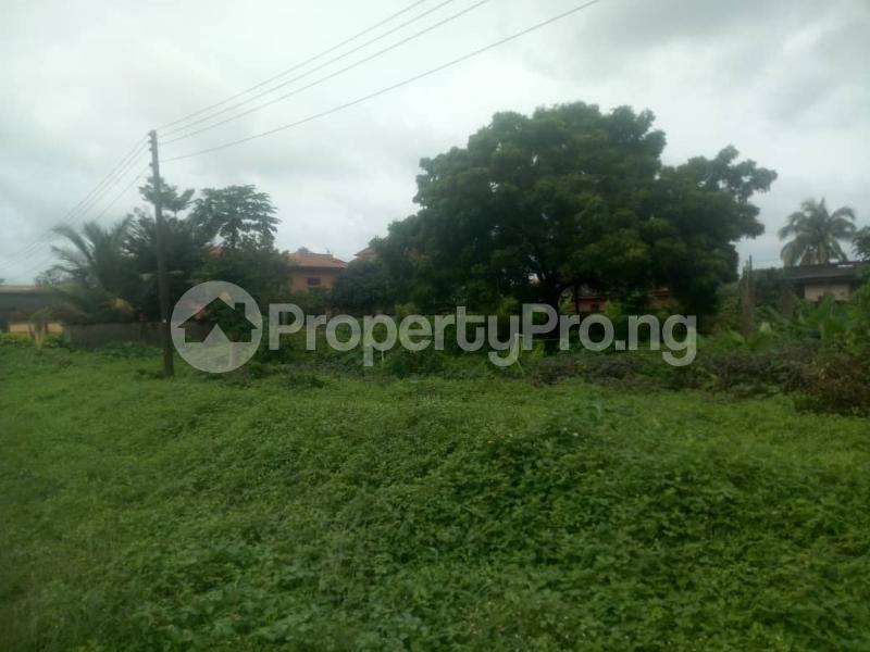 Land for sale Age Mowo, Along Badagry Express Way Age Mowo Badagry Lagos - 0