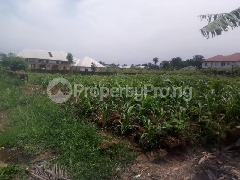 Residential Land Land for sale Idoro Road Uyo Akwa Ibom - 2