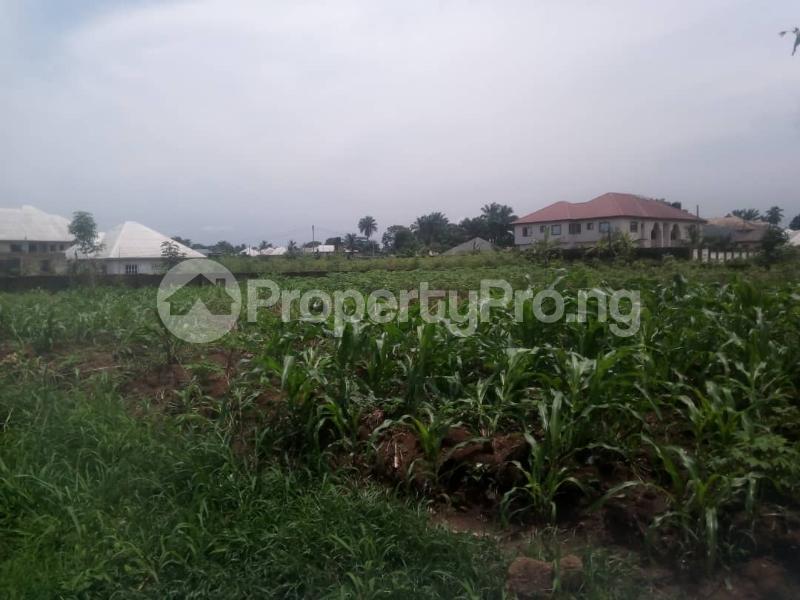 Residential Land Land for sale Idoro Road Uyo Akwa Ibom - 3