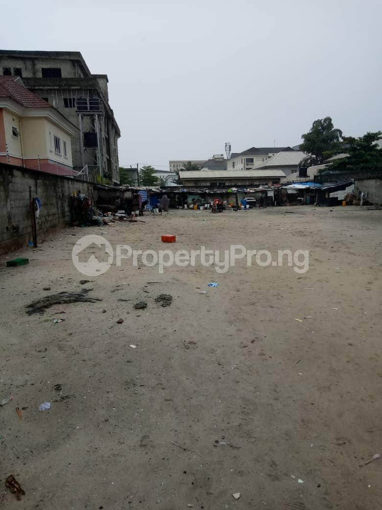 Residential Land Land for sale Ihuntayi  Victoria Island Extension Victoria Island Lagos - 1