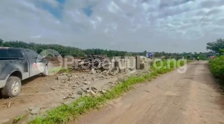 Residential Land for sale Pinnacle Rave, Igbodu Epe Lagos - 8