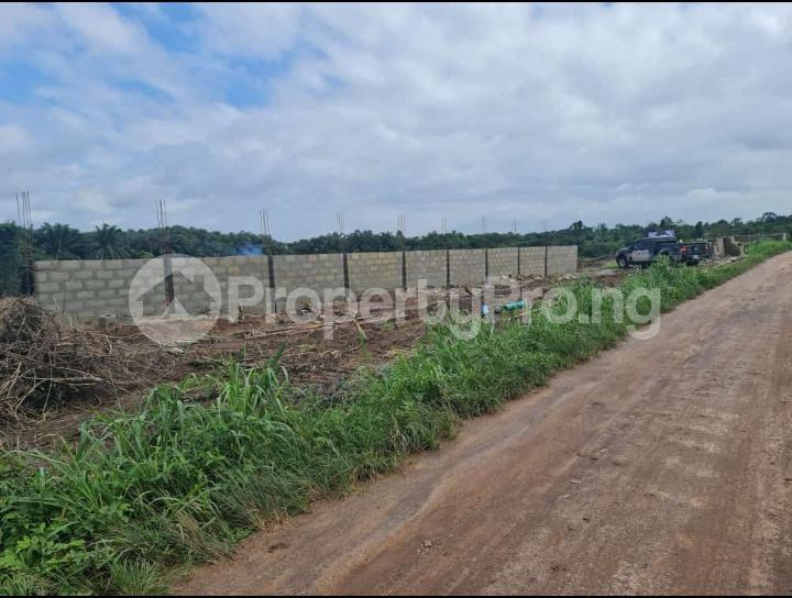 Residential Land for sale Pinnacle Rave, Igbodu Epe Lagos - 6