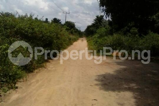 Mixed   Use Land Land for sale Egansoyindo Epe Lagos Epe Road Epe Lagos - 2
