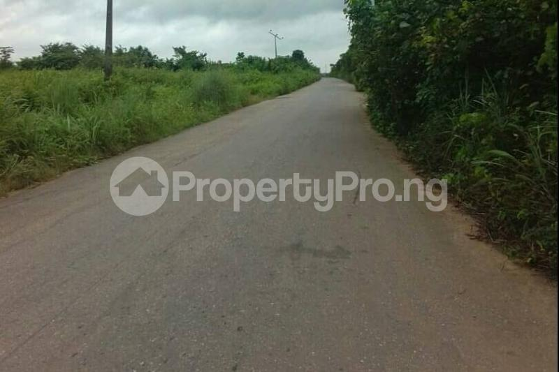 Mixed   Use Land Land for sale Egansoyindo Epe Lagos Epe Road Epe Lagos - 5
