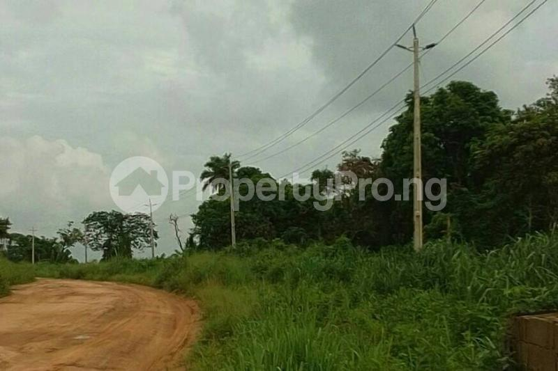 Mixed   Use Land Land for sale Egansoyindo Epe Lagos Epe Road Epe Lagos - 0