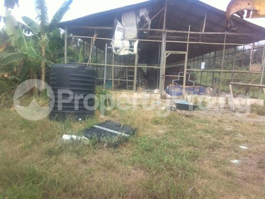 Mixed   Use Land Land for sale Egansoyindo Epe Lagos Epe Road Epe Lagos - 6