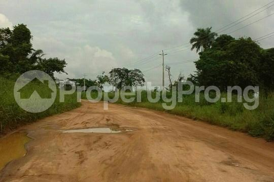 Mixed   Use Land Land for sale Egansoyindo Epe Lagos Epe Road Epe Lagos - 3
