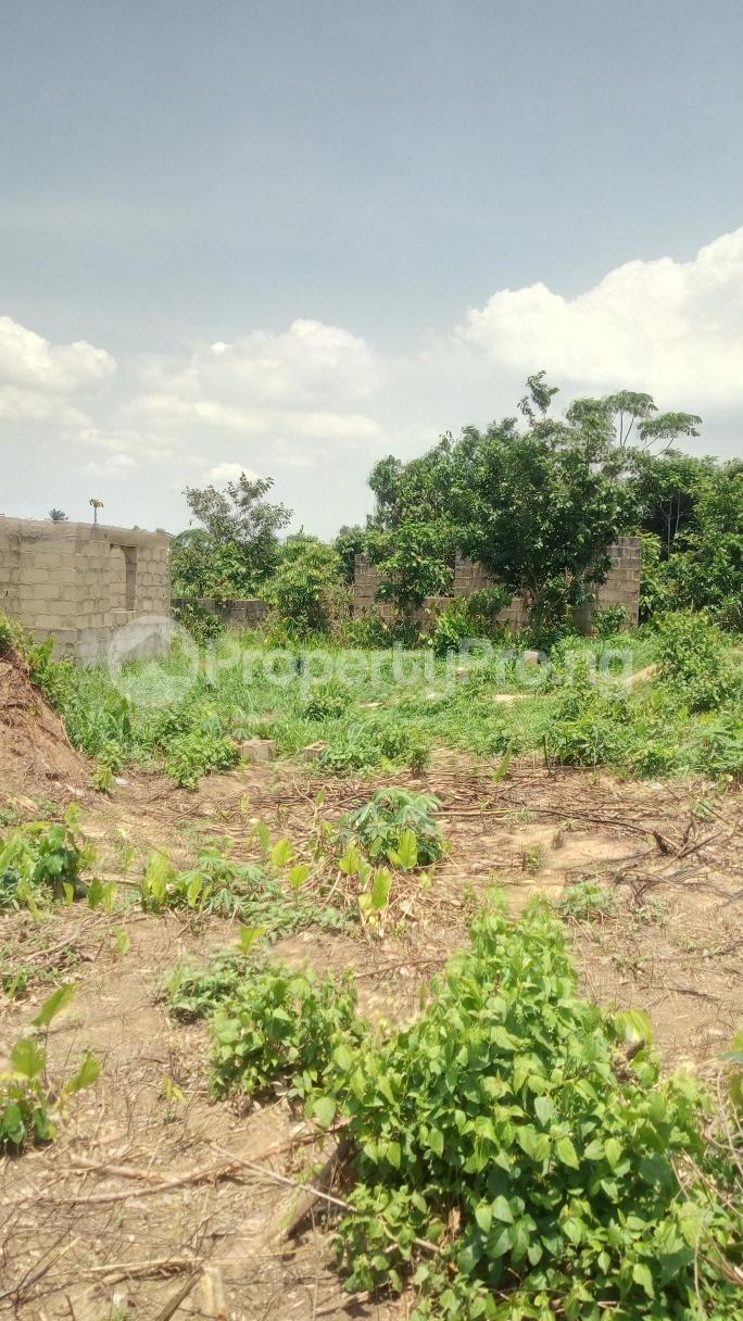 Land for sale Mawere Tapa Rd  Agric Ikorodu Lagos - 12