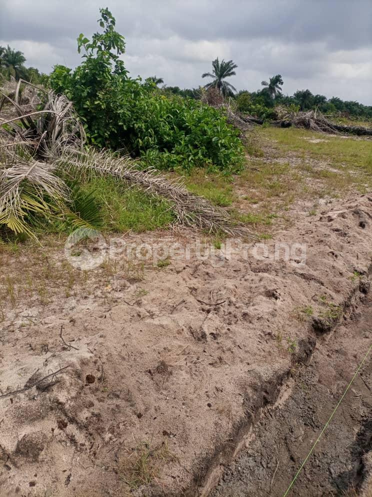 Land for sale Providence Arena, Igbonla Epe Lagos - 3