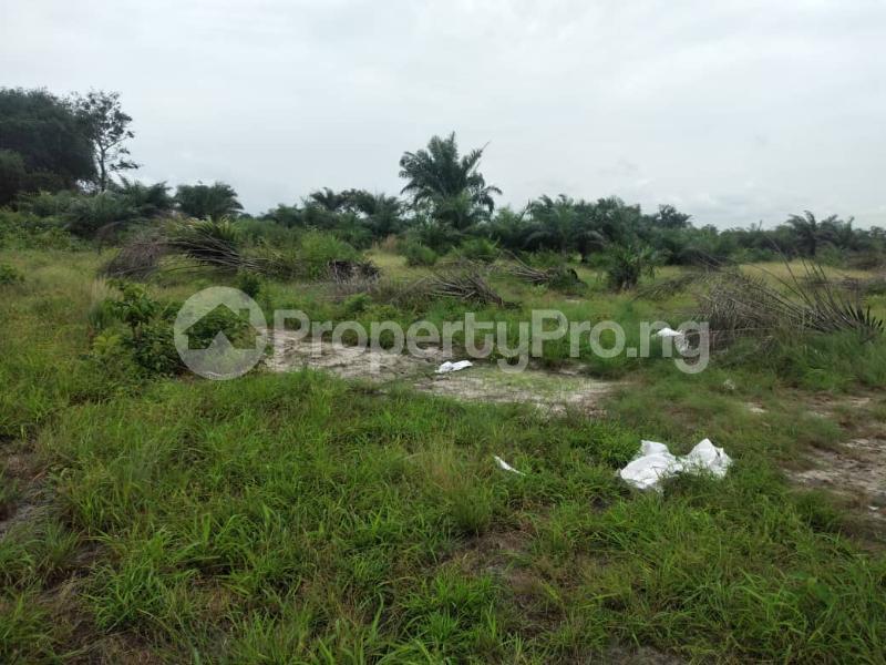 Land for sale Providence Arena, Igbonla Epe Lagos - 1