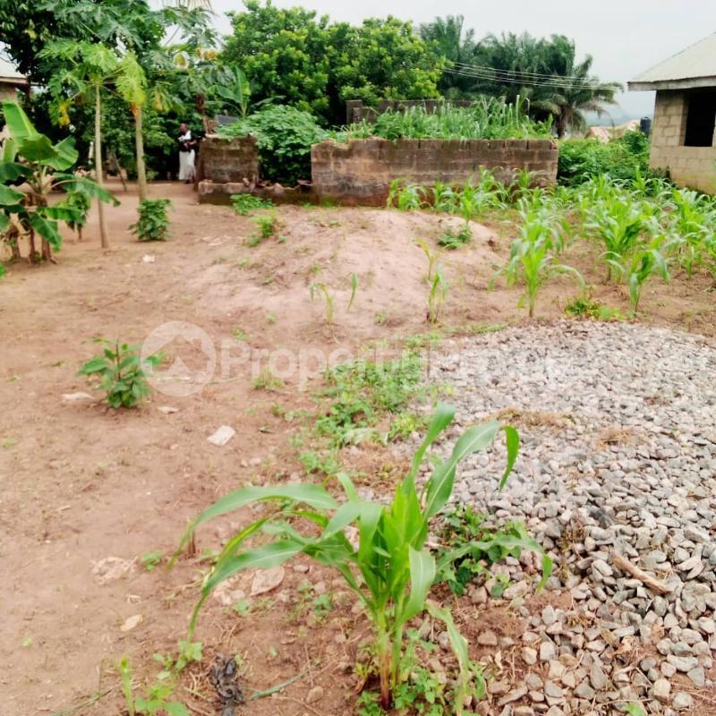 Residential Land for sale Alagbaka Akure Ondo - 0