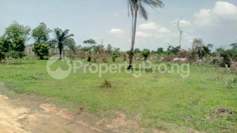 Land for sale Mawere Tapa Rd  Agric Ikorodu Lagos - 5