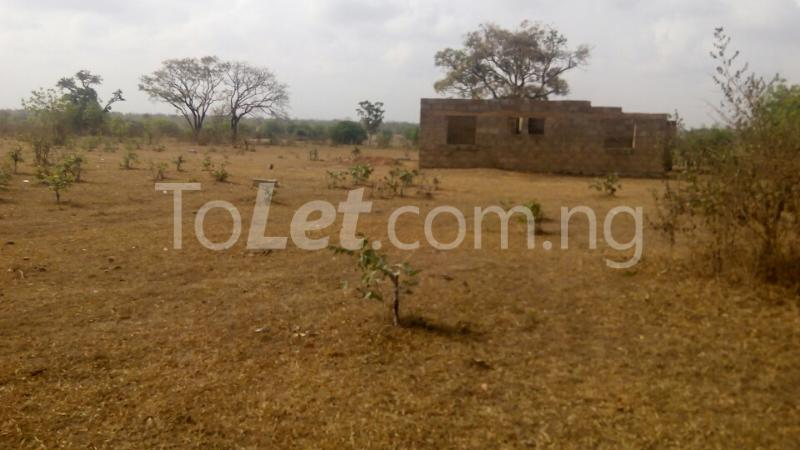 Land for sale Gbagede/Kabba Road. Ganmo Amoyo Ifelodun Kwara - 1