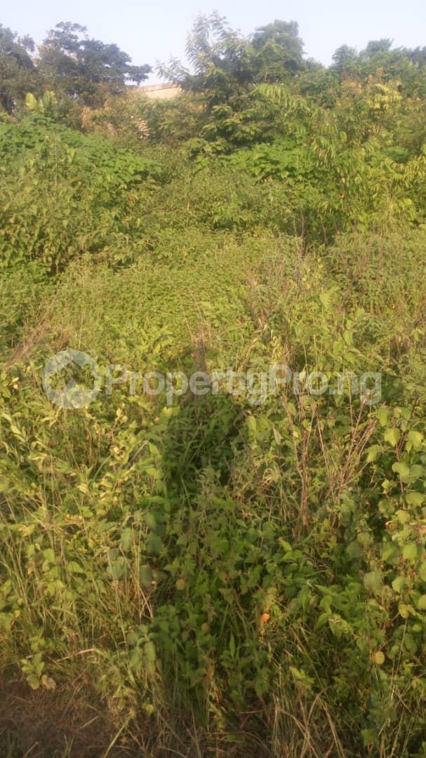 Mixed   Use Land Land for sale Orija, Owode rd, Owode, Ede Ede North Osun - 2