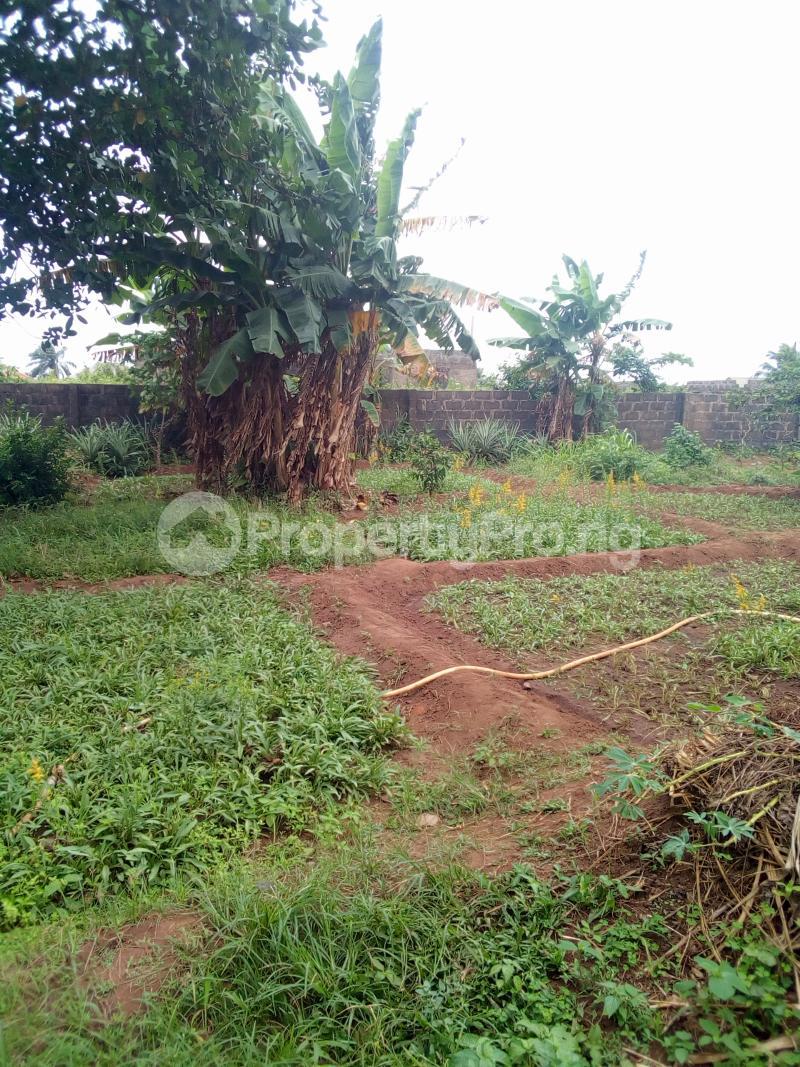 Warehouse for sale Agbara Igbesa Agbara Agbara-Igbesa Ogun - 0