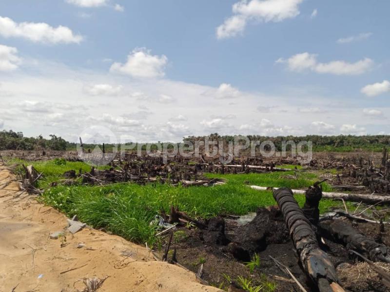 Serviced Residential Land Land for sale Afri Garden City Phase 2 Iju Ota By Covenant University Canaan Land Sango Ota Ado Odo/Ota Ogun - 2